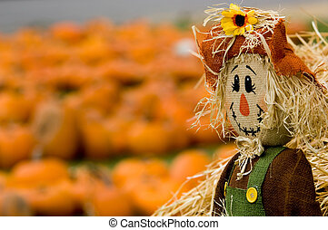 Autumn, fall decoration at pumplin patch featuing a scarecrow and wagon with straw and pumpkins in the background