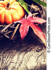 Autumn decoration with pumpkin and colorful leaves