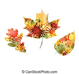 Autumn design of colorful leaves