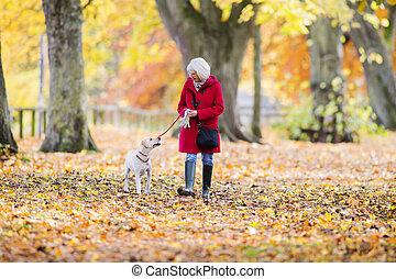 Autumn Dog Walk - Senior woman is enjoying an autumn walk...