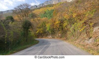 Autumn drive on mountain road