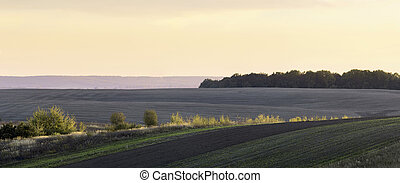 Autumn evening in the farmland