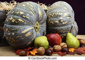 Autumn Fall Harvest Pumpkins, Nuts and Fruit.