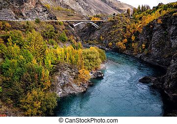 Autumn Fall in New Zealand