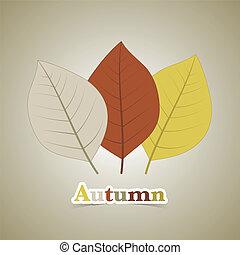 Three autumn fall leaves illustration