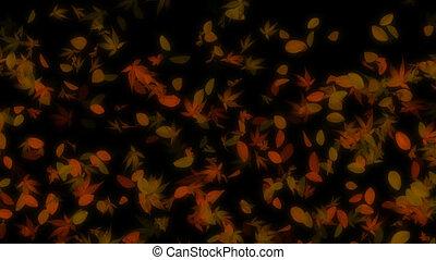 Autumn Falling Leaves Loop