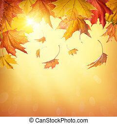 Autumn falling leaves on colorful background