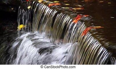 Autumn Falls Loop