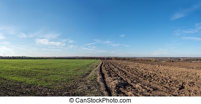 Autumn field plowed half