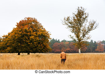 Young man wanders in a field in autumn in national park 'De hoge Veluwe' in the Netherlands