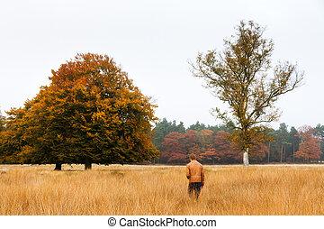 Autumn field wandering - Young man wanders in a field in...