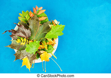 Autumn flat lay composition. Autumn still life on white plate over blue background