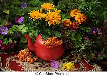 Autumn flowers outdoor