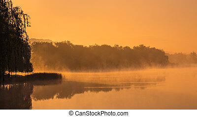 fog in the morning on the river