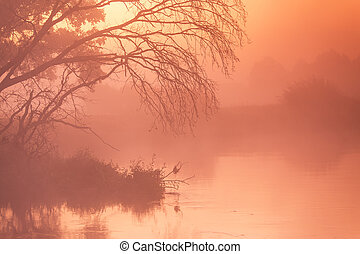 Autumn foggy rural sunrise. Sunny dawn on river
