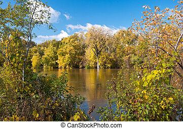 Autumn Foliage Along Minnesota River
