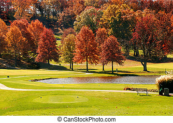 Autumn Foliage at the Golf Course - The sun shines on a ...
