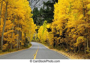 Autumn Foliage - Autumn foliage at full bloom in mono lake ...