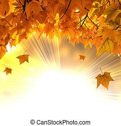Autumn foliage - Falling orange leaves background against ...