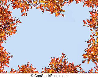Autumn foliage frame