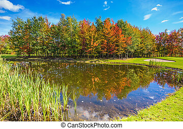 Autumn foliage reflected in the pond