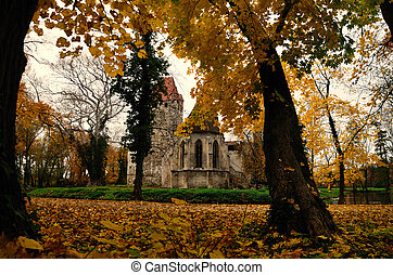 autumn forest and castle