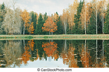 Autumn forest and lake.