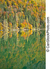 Autumn forest and reflection in a mountain lake