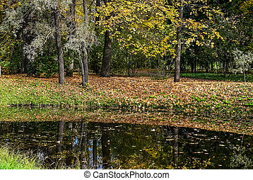 autumn forest and reflection in the lake. Dramatic unusual scene. Red and yellow autumn leaves. Beauty world.