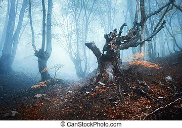 Autumn forest in blue fog. Mystical autumn trees