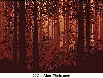 Autumn Forest Landscape - Deciduous autumn forest landscape...