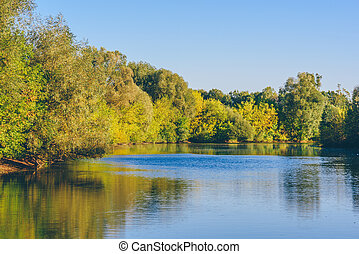 Autumn forest on lake shore