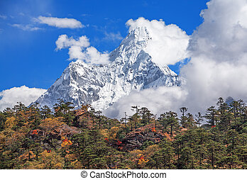 Autumn forest on the background of the sacred Ama Dablam peak (6814 m) in Nepal, Himalayas.
