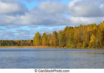 Autumn forest on the lake at morning.