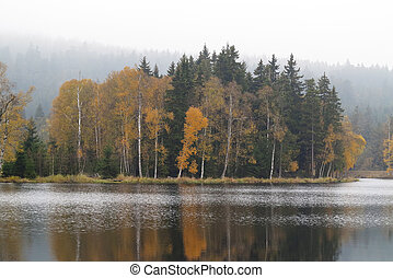 Autumn forest on the shores of Lake