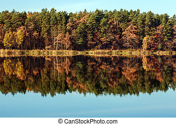 Autumn forest reflection in lake on sky background