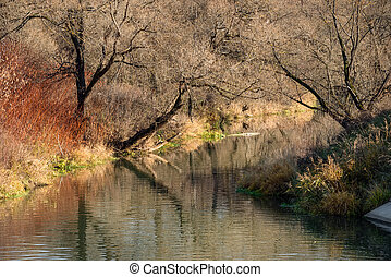 Autumn forest river water panorama. Natural color.