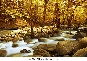 Autumn forest with a mountain river with stream falling into it.