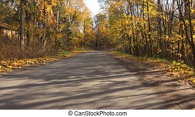 Autumn forest. Travel by car on the road in the fall.