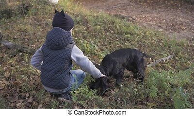 Autumn forest with a boy and his dog. black Spaniel