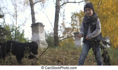 Autumn forest with a boy and his dog. black Spaniel on a...