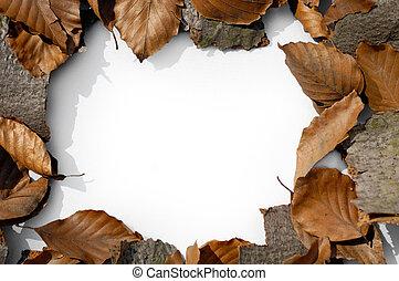 Autumn frame 1 - Autumn framed background texture