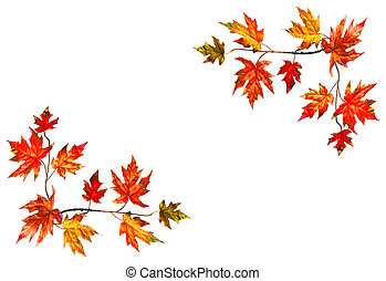 Framed background with red fall maple leaves