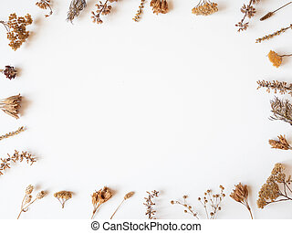 Autumn frame of dried different plants and flowers on white background. Top view. Flat lay