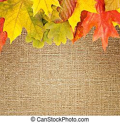 autumn frame on canvas background