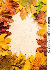 Autumn frame on paper