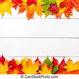 Autumn frame with colorful marple leaves on white wood ...