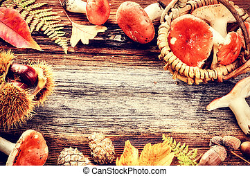 Autumn frame with forest mushrooms