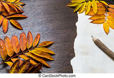 Autumn frame with leaves and old paper