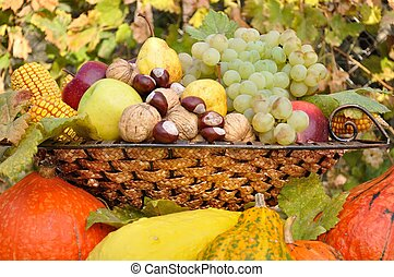 Autumn fruits and vegetables